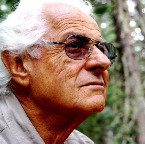 Artista pittore Giorgio Ceccarelli